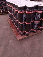 sbs改性瀝青防水卷材sbs火烤型新型防水卷材廠家直銷