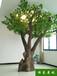 揚州仿真樹圖片信譽保證,仿真樹施工
