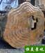 馬鞍山水泥仿木紋圖片,水泥仿木紋價格