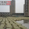 广东广州陶粒厂家