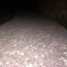 供應商彩色洗砂地面杭州生態透水混凝土施包施工