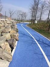 促進海綿城市發展生態透水混凝土鋪裝
