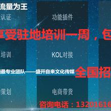 江苏抖音业务招商短视频运营招商加盟盛开自来