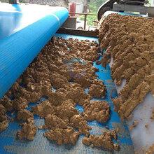 山东莱芜沙场污水处理设备沙场淤泥带式压滤机型号参数图片