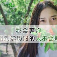 深圳光明大专本科学历提升教育培训