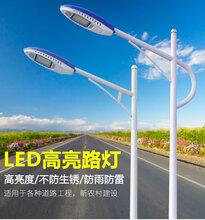 扬州源美光电生产销售7米道路灯道路照明图片