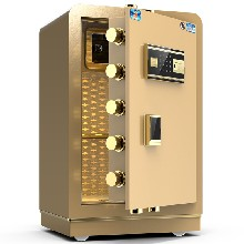 保密柜电子密码文件柜加厚铁皮指纹锁防盗钢制财务资料矮柜保险柜