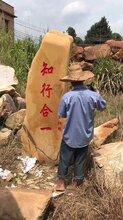 廠家直銷大型景觀石刻字