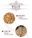 浙江麗水原漿老酒加盟代理52度濃香型