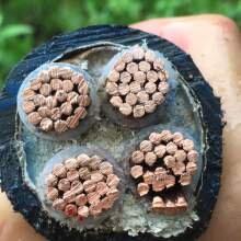 天津废旧电缆回收、废紫铜回收、废铝合金铝导线回收,(现金服务上门)