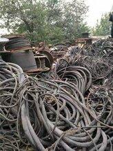 山东省郯城铜板回收、铜豆回收、铜线在线估价回收