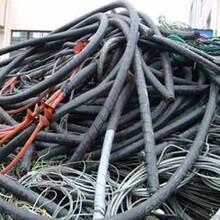 吉林电缆回收~吉林吉林(各类)废旧电缆回收~详细价格一览表图片