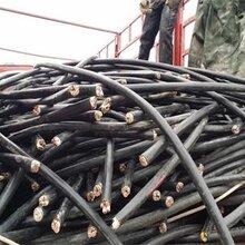 平邑高压电缆回收_带皮电缆常年回收