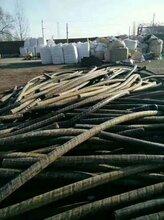 东营东营区二手电缆回收-回收电缆