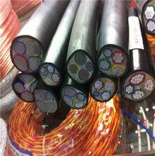 天津和平电线回收-天津电缆回收