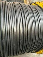 天津西青旧合金电缆回收-天津二手电缆回收
