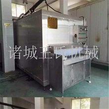 王氏饺子速冻机加工定制速冻水饺机器设备新型节能隧道式速冻机图片
