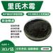 里氏木霉木霉菌廠家發酵菌種供應商抗病木霉菌銷售添加菌種