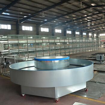 中州鸡笼厂自动平带清粪机清理鸡粪设备蛋养鸡