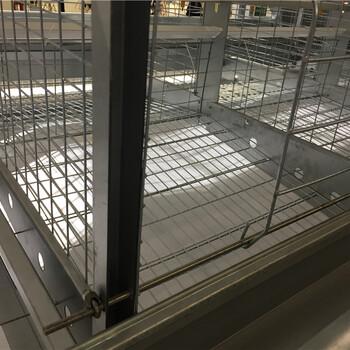 全自动养鸡设备蛋鸡养殖设备肉鸡养殖设备