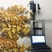 厂家定制户外室内墙体彩绘机大型便携式3d打印墙面绘画机