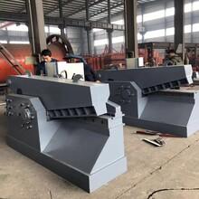 電動液壓廢鋼鱷魚剪板機廢鋼剪鐵機發動機殼汽車剪切機圖片