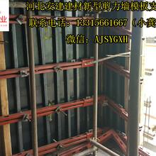 新型剪力墙模板支撑体系施工工法图片