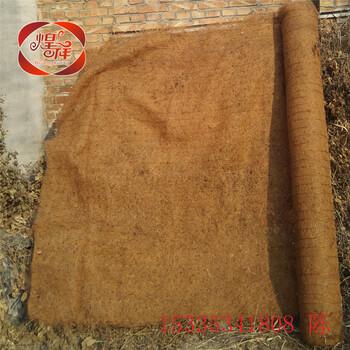 环保草毯厂家直销抗冲植草毯