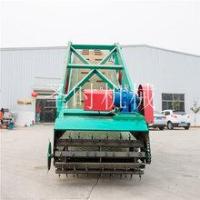 牛场小型青贮取料机生产商青贮饲料取料机批发自走式青贮取料机加工定做图片