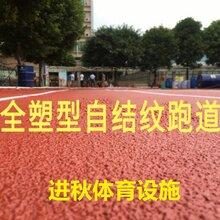学校球场跑道塑胶跑道材料球场工程承包
