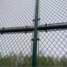 学校球场围网