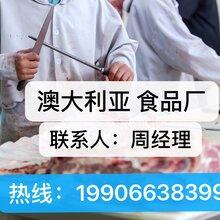 出国劳务年薪三十万以上正规工作签证建筑工司机厨师图片