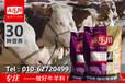 肉牛冬季增肥長肉快速育肥預混料