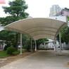上海轩誉停车棚,上海金桥精美上海轩誉钢结构停车棚