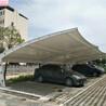上海轩誉膜结构车棚,铜山区不起皱上海轩誉钢结构停车棚放心省心
