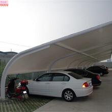 上海高行堅實上海軒譽鋼結構停車棚服務周到圖片