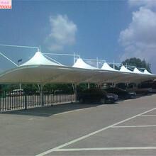 上海奉贤庄行销售上海轩誉钢结构停车棚品质优良图片