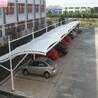 上海軒譽膜結構車棚,上海松江小昆山定做上海軒譽鋼結構停車棚服務周到