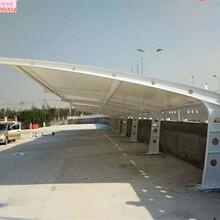 天寧區精細上海軒譽鋼結構停車棚樣式優雅圖片