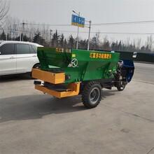 撒肥机厂家干湿粪撒粪车有机肥撒肥机图片