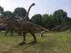 四川恐龙模型超级真实的恐龙模型恐龙展设备租赁