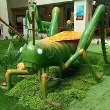 仿真昆蟲仿真昆蟲供應商昆蟲展租賃公司昆蟲模型制作廠家圖片