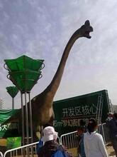 恐龍模型出租出售大型仿真一模一樣恐龍模型出租租賃圖片
