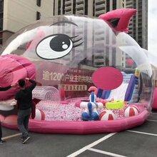 新款粉萌猪乐园出租22米粉色猪猪儿童气模乐园租赁