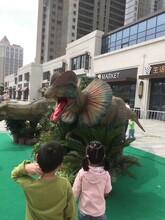 高端品质恐龙模型出租租赁仿真恐龙出租制作厂和记娱乐注册图片