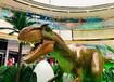 浙江恐龍展模型租賃恐龍展設備出租優質恐龍設備租賃