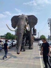 16米巡游巨象全新亮相!巡游大象出租巡游大象租賃圖片