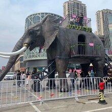 徐州機械大象出租仿真大象租賃機械大象巡游展示圖片