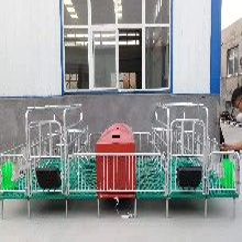 定做母豬產床豬用復合板單雙體分娩床保育床兩用定位欄養豬設備