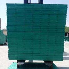 復合BMC材料漏糞板豬用產床保育床塑料母豬漏糞板小豬養豬設備